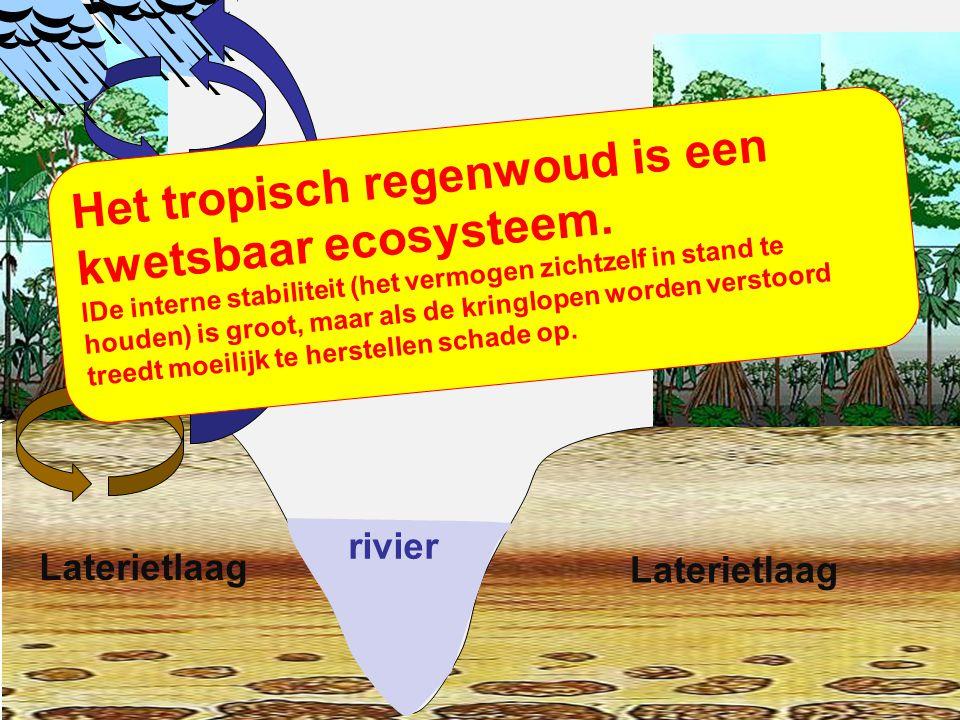 rivier Laterietlaag Er is een korte kringloop van water.