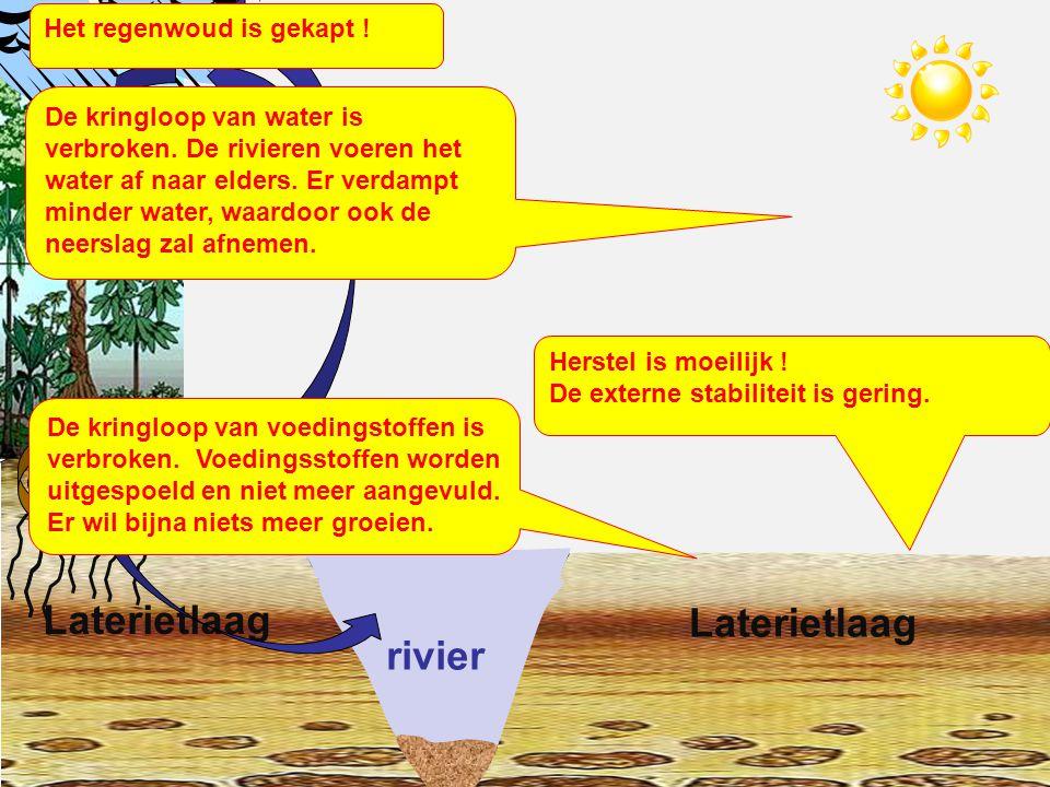 rivier Laterietlaag Herstel is moeilijk .De externe stabiliteit is gering.