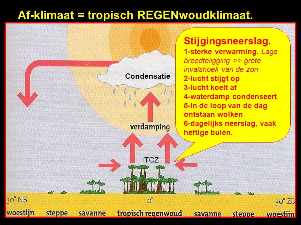 Af-klimaat = tropisch REGENwoudklimaat.Condensatie ITCZ Stijgingsneerslag.