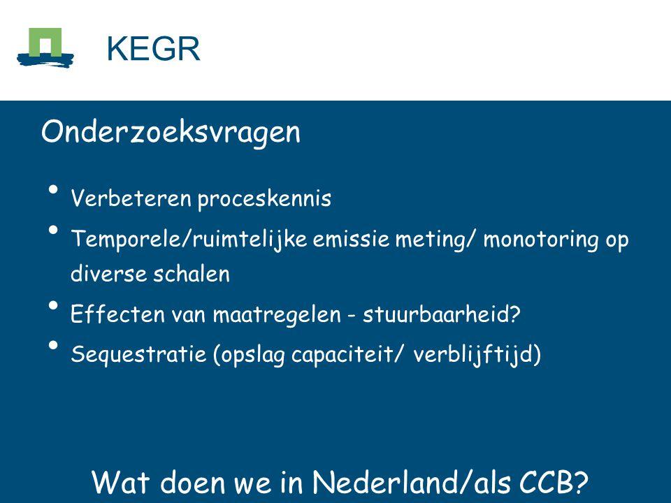 Wat doen we in Nederland.