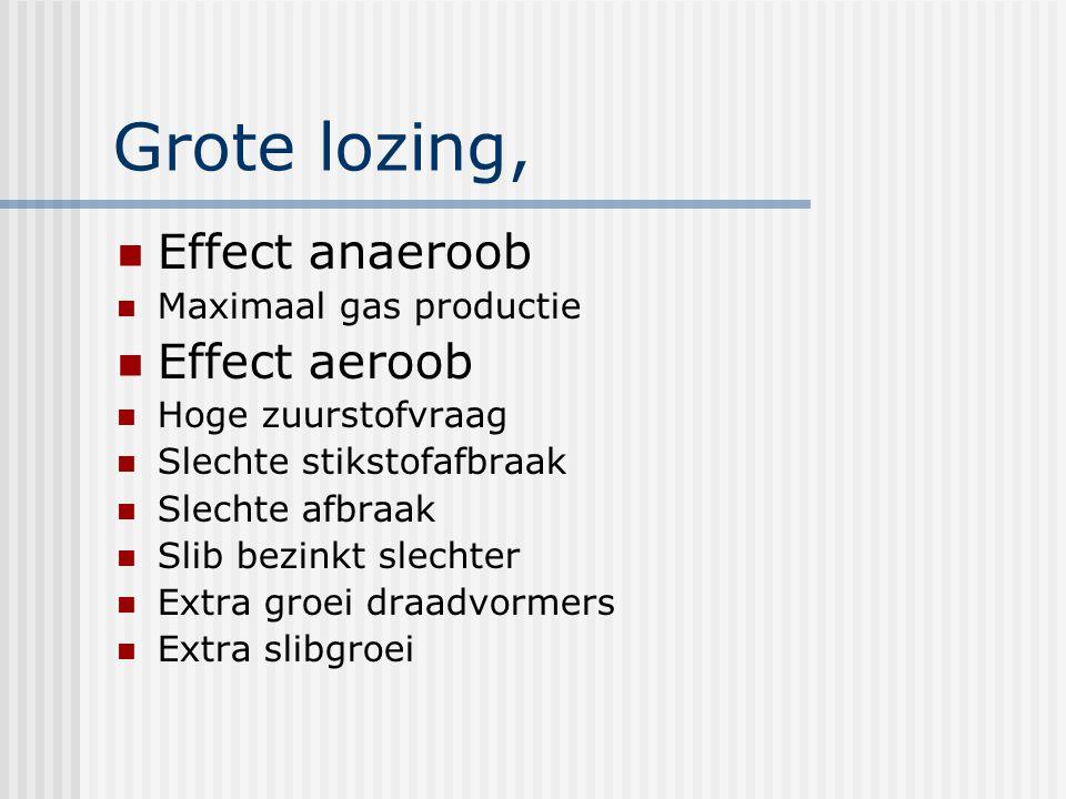 Grote lozing, Effect anaeroob Maximaal gas productie Effect aeroob Hoge zuurstofvraag Slechte stikstofafbraak Slechte afbraak Slib bezinkt slechter Extra groei draadvormers Extra slibgroei