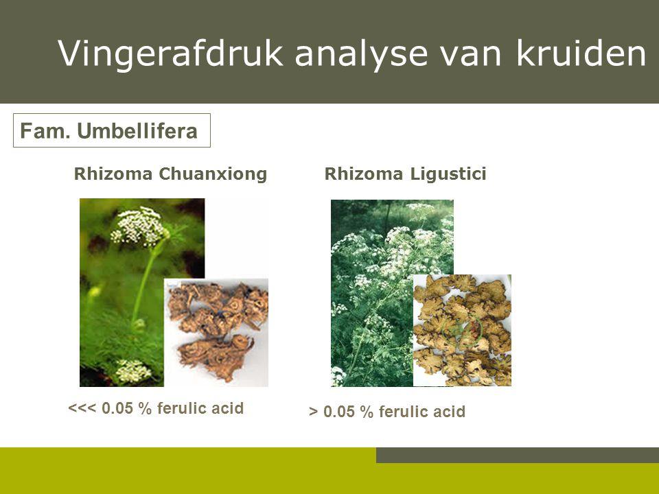 Rhizoma Chuanxiong Rhizoma Ligustici Fam. Umbellifera > 0.05 % ferulic acid <<< 0.05 % ferulic acid