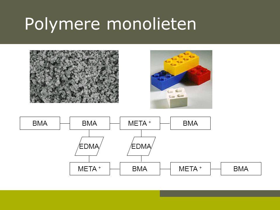 Polymere monolieten BMA META + BMA META + BMAMETA + BMA EDMA