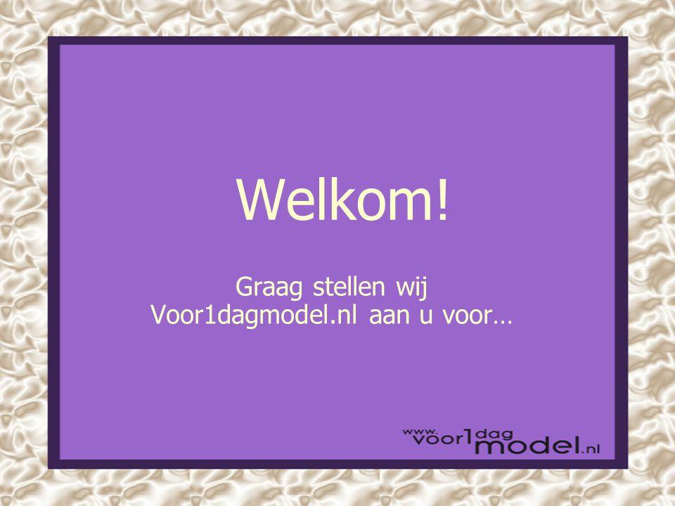 Welkom! Graag stellen wij Voor1dagmodel.nl aan u voor…