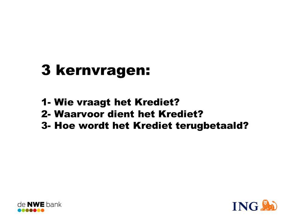 3 kernvragen: 1- Wie vraagt het Krediet? 2- Waarvoor dient het Krediet? 3- Hoe wordt het Krediet terugbetaald?
