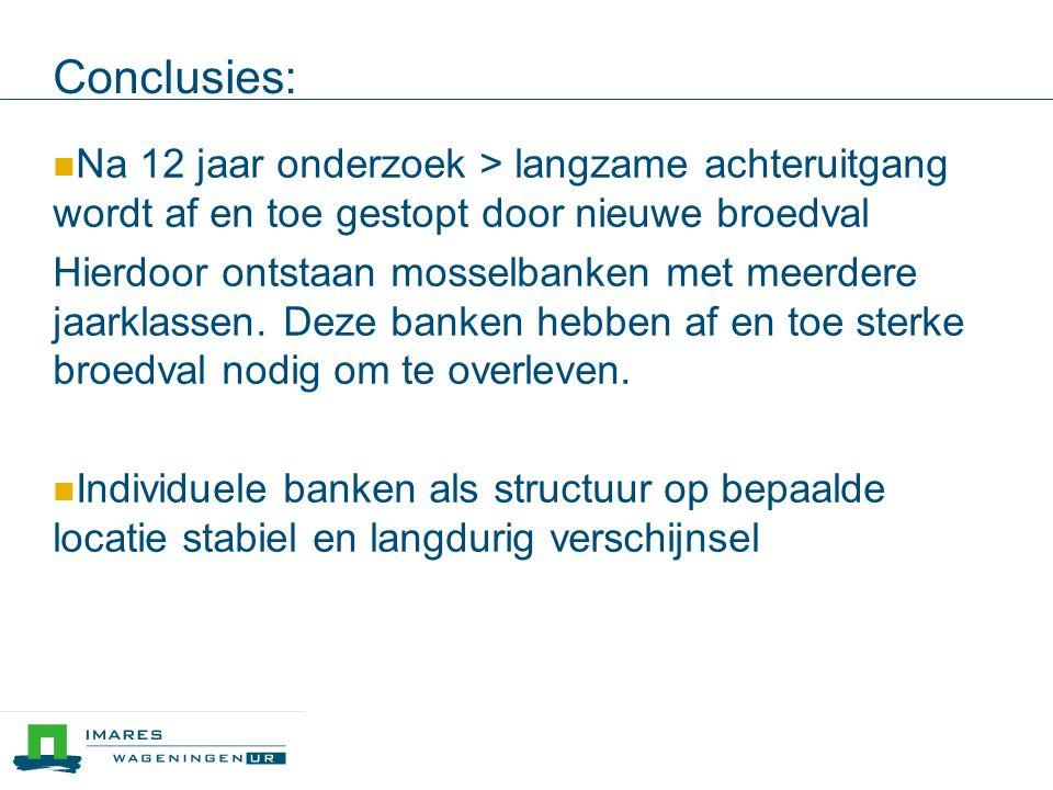 Conclusies: Na 12 jaar onderzoek > langzame achteruitgang wordt af en toe gestopt door nieuwe broedval Hierdoor ontstaan mosselbanken met meerdere jaarklassen.
