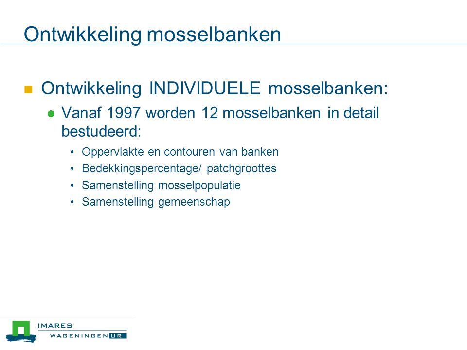 Ontwikkeling mosselbanken Ontwikkeling INDIVIDUELE mosselbanken: Vanaf 1997 worden 12 mosselbanken in detail bestudeerd: Oppervlakte en contouren van banken Bedekkingspercentage/ patchgroottes Samenstelling mosselpopulatie Samenstelling gemeenschap