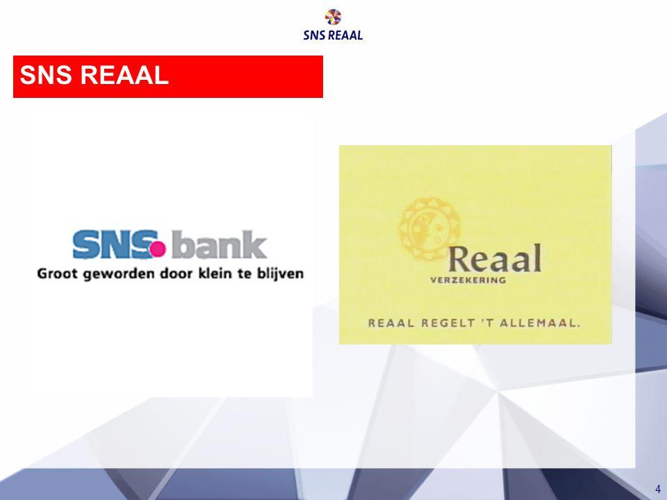 4 SNS REAAL
