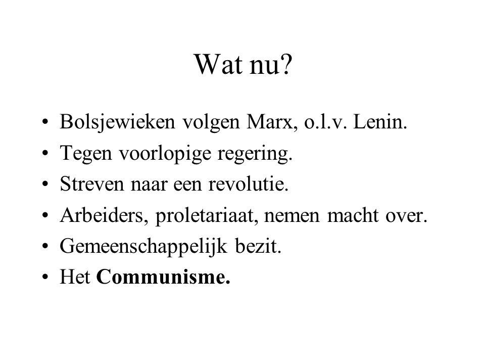 Wat nu? Bolsjewieken volgen Marx, o.l.v. Lenin. Tegen voorlopige regering. Streven naar een revolutie. Arbeiders, proletariaat, nemen macht over. Geme