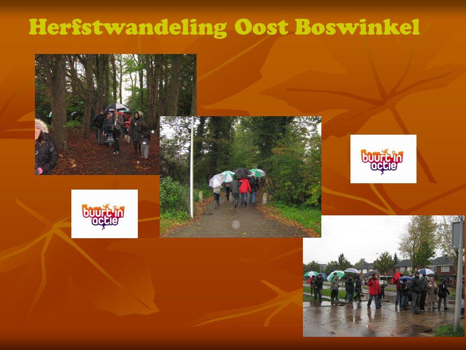 Herfstwandeling Oost Boswinkel