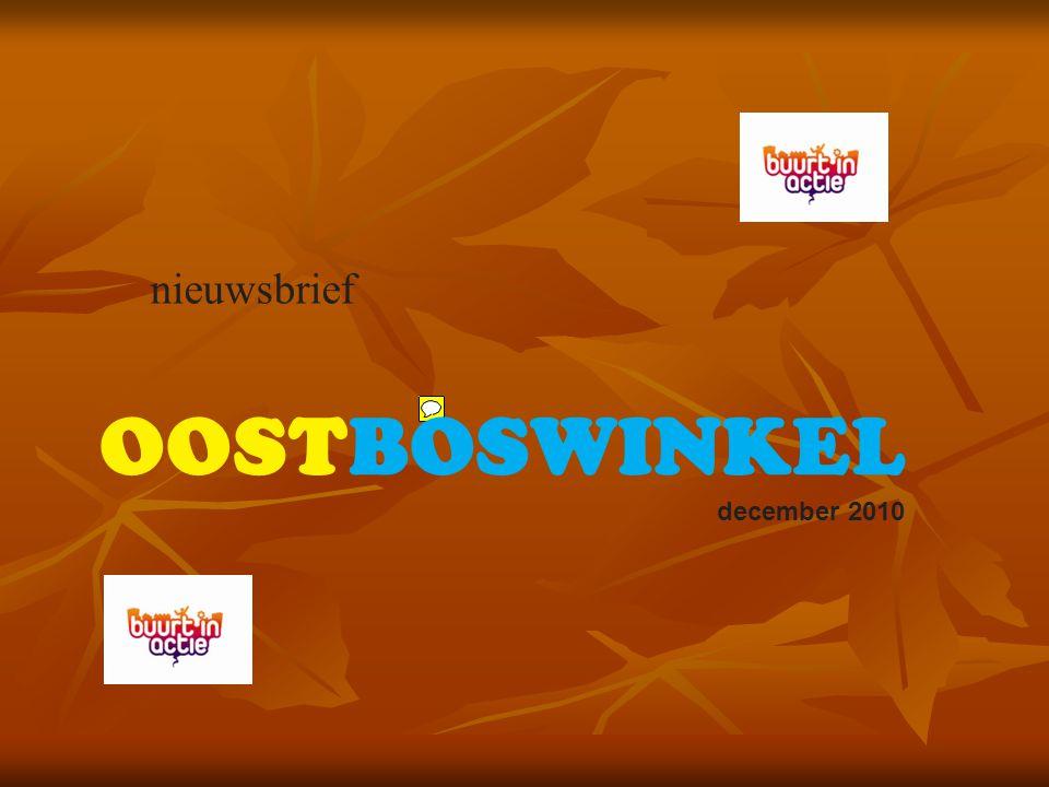 nieuwsbrief OOSTBOSWINKEL december 2010