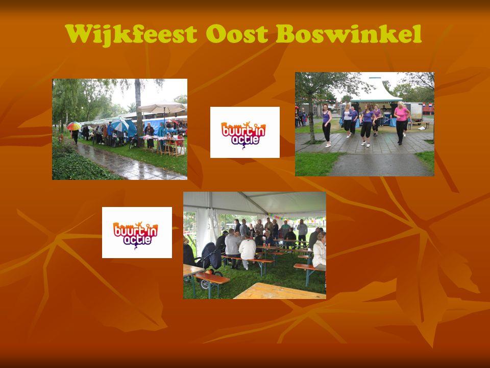 Wijkfeest Oost Boswinkel