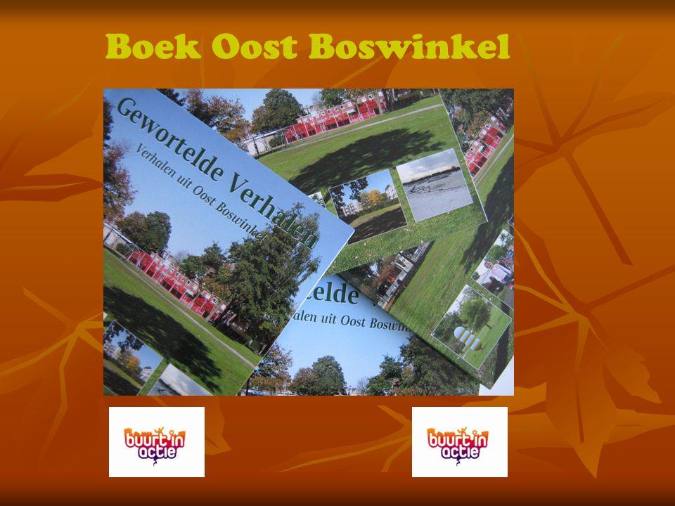 Boek Oost Boswinkel