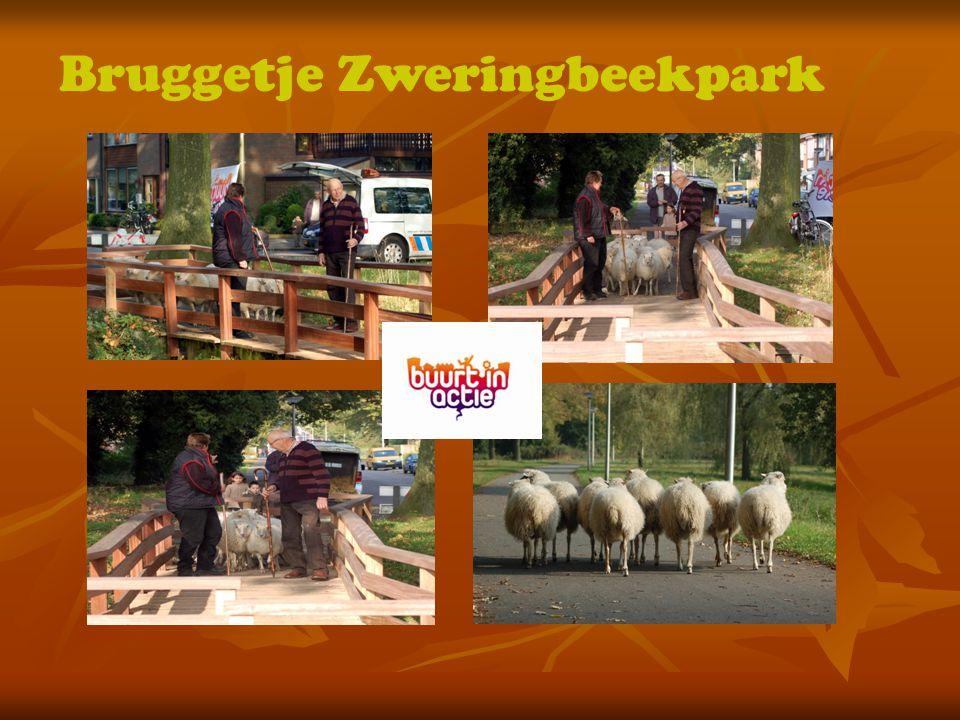Bruggetje Zweringbeekpark