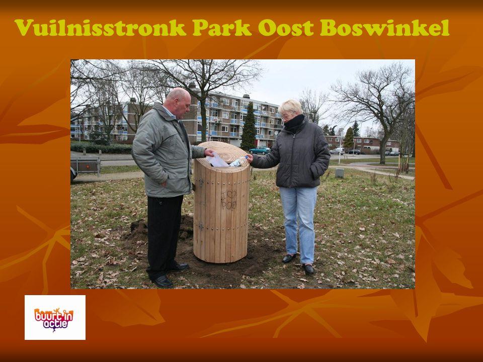 Vuilnisstronk Park Oost Boswinkel