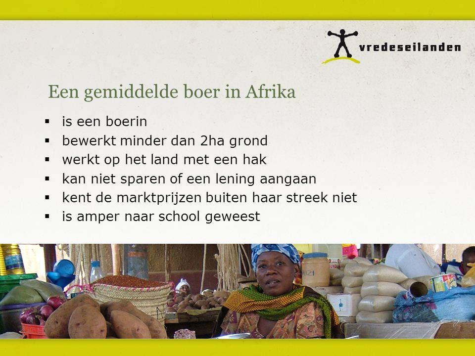 Een gemiddelde boer in Afrika  is een boerin  bewerkt minder dan 2ha grond  werkt op het land met een hak  kan niet sparen of een lening aangaan  kent de marktprijzen buiten haar streek niet  is amper naar school geweest