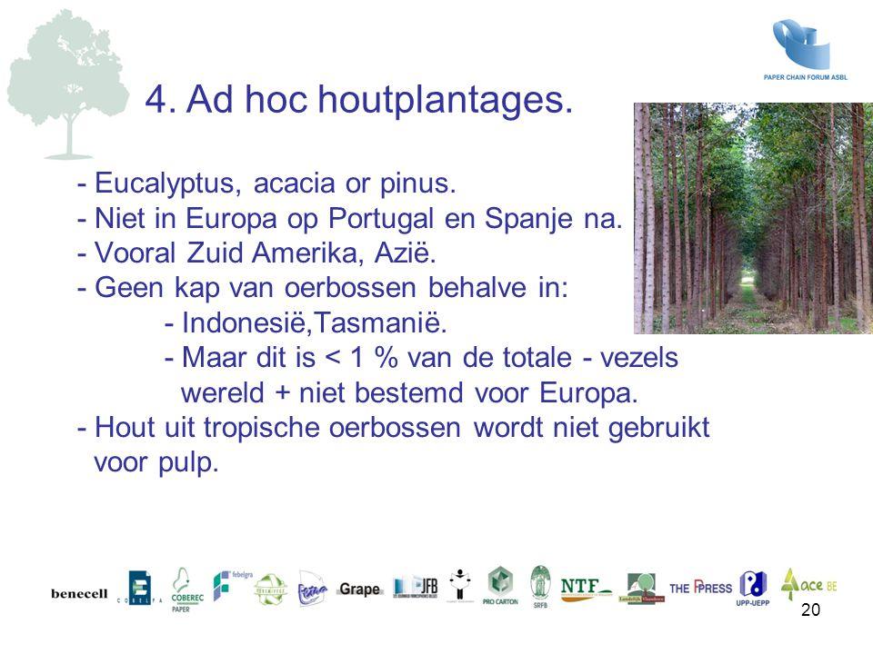 - Eucalyptus, acacia or pinus. - Niet in Europa op Portugal en Spanje na. - Vooral Zuid Amerika, Azië. - Geen kap van oerbossen behalve in: - Indonesi