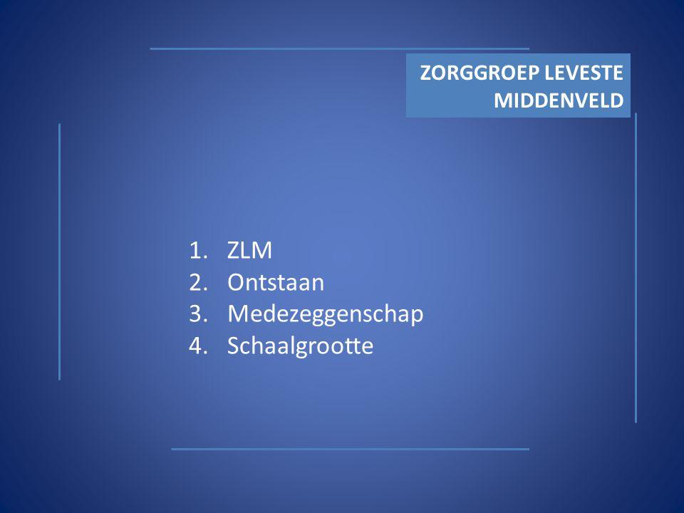 Wat is ZLM Een zorggroep bestaande uit: - 2 algemene ziekenhuizen - in Emmen en Hoogeveen - 2 care divisies - met een 20-tal verpleeghuizen, zorg- en dienstencentra, woonzorg complexen in de regio zuidoost en midden Drenthe Care Scheper Ziekenhuis