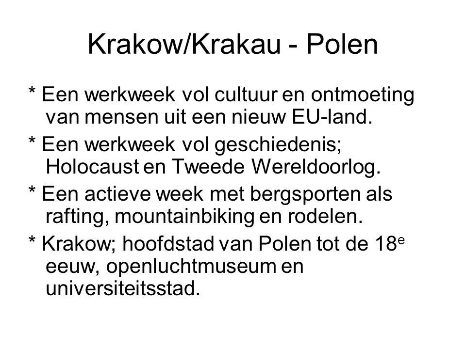 Krakow/Krakau - Polen * Een werkweek vol cultuur en ontmoeting van mensen uit een nieuw EU-land. * Een werkweek vol geschiedenis; Holocaust en Tweede