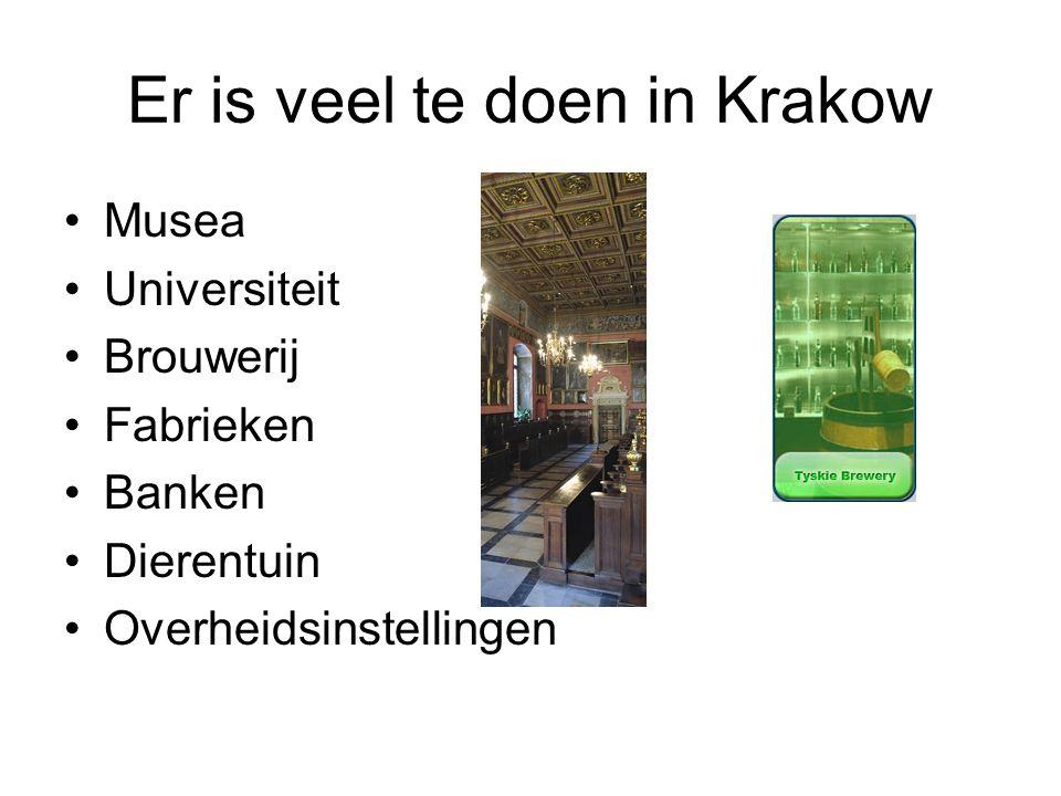 Er is veel te doen in Krakow Musea Universiteit Brouwerij Fabrieken Banken Dierentuin Overheidsinstellingen