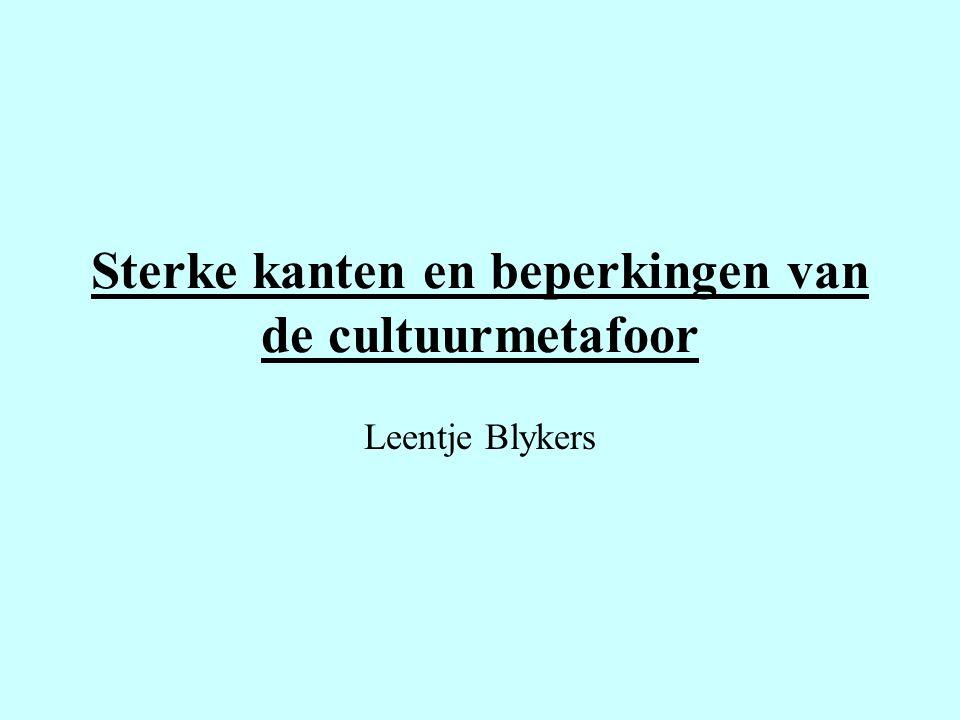 Sterke kanten en beperkingen van de cultuurmetafoor Leentje Blykers