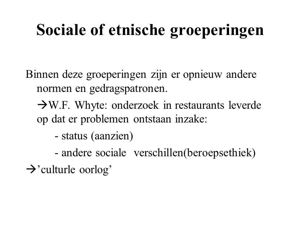 Sociale of etnische groeperingen Binnen deze groeperingen zijn er opnieuw andere normen en gedragspatronen.  W.F. Whyte: onderzoek in restaurants lev