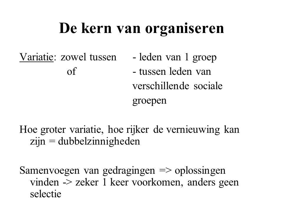 De kern van organiseren Variatie: zowel tussen - leden van 1 groep of - tussen leden van verschillende sociale groepen Hoe groter variatie, hoe rijker