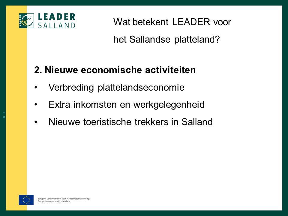 Wat betekent LEADER voor het Sallandse platteland? 2. Nieuwe economische activiteiten Verbreding plattelandseconomie Extra inkomsten en werkgelegenhei