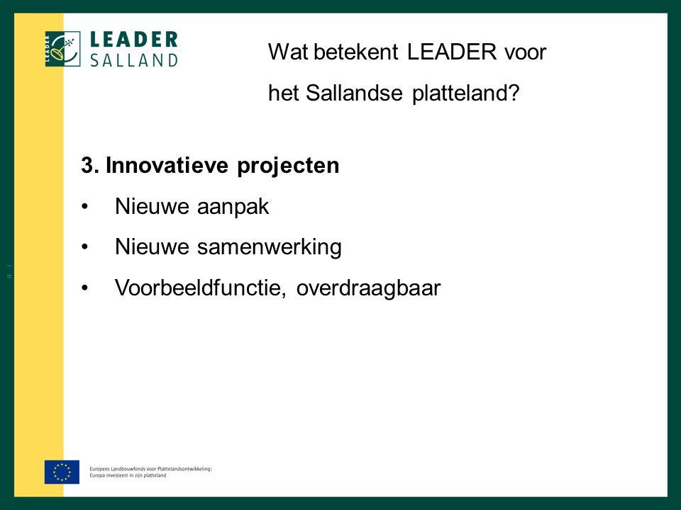 Wat betekent LEADER voor het Sallandse platteland? 3. Innovatieve projecten Nieuwe aanpak Nieuwe samenwerking Voorbeeldfunctie, overdraagbaar