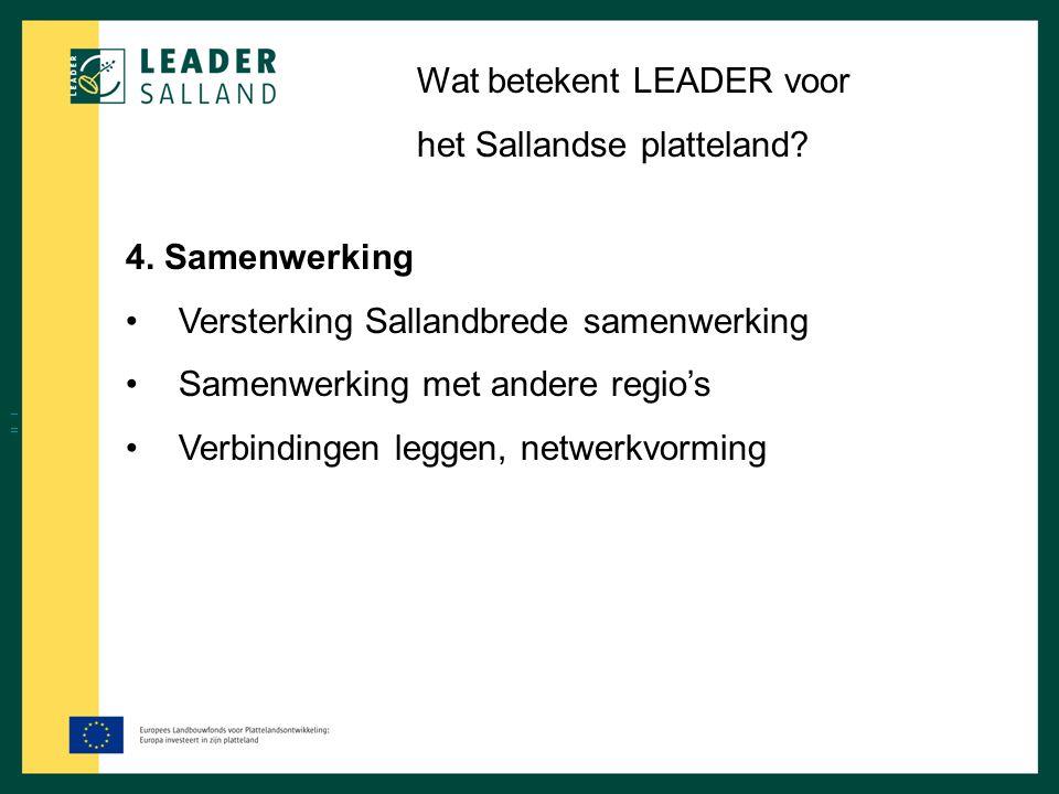 Wat betekent LEADER voor het Sallandse platteland? 4. Samenwerking Versterking Sallandbrede samenwerking Samenwerking met andere regio's Verbindingen