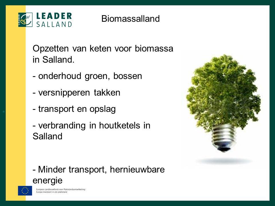 Biomassalland Opzetten van keten voor biomassa in Salland. - onderhoud groen, bossen - versnipperen takken - transport en opslag - verbranding in hout