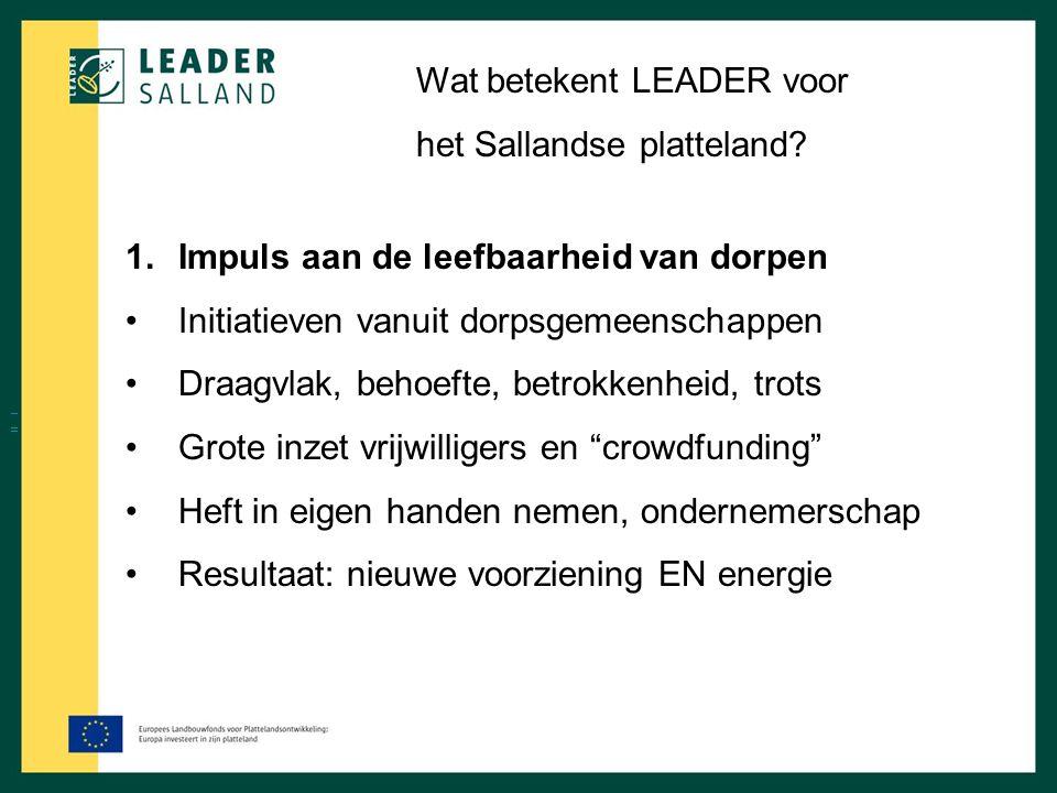 Wat betekent LEADER voor het Sallandse platteland? 1.Impuls aan de leefbaarheid van dorpen Initiatieven vanuit dorpsgemeenschappen Draagvlak, behoefte