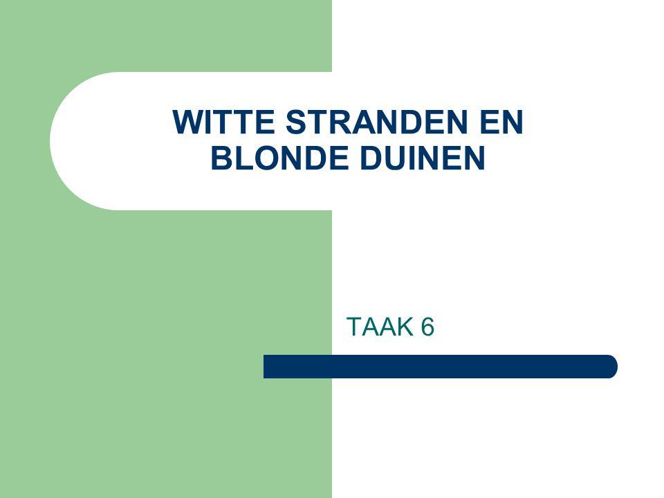 WITTE STRANDEN EN BLONDE DUINEN TAAK 6