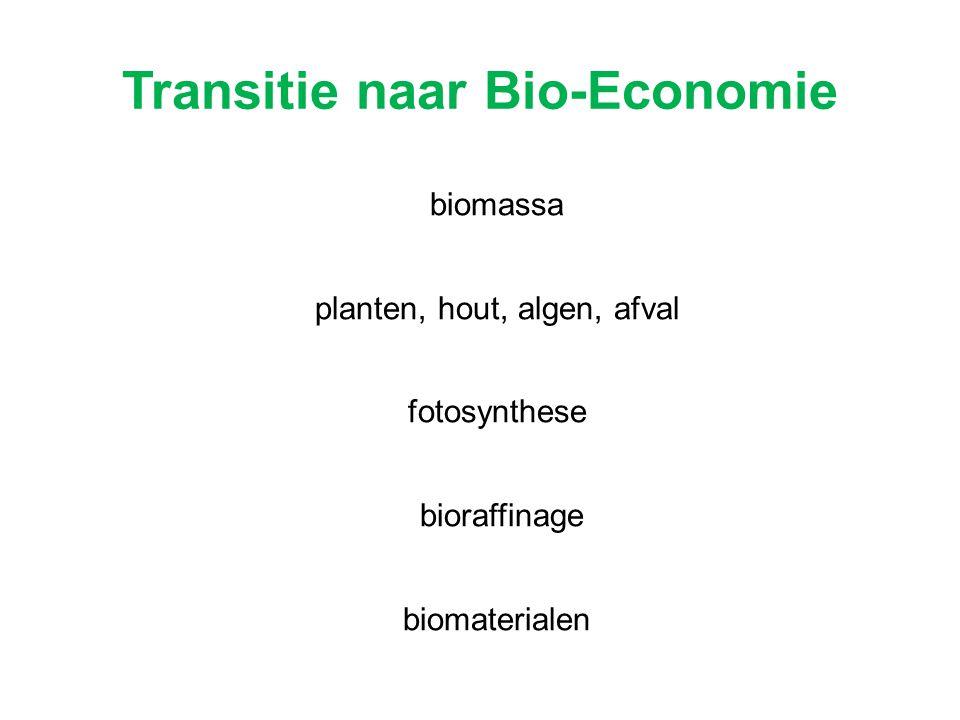 biomassa planten, hout, algen, afval fotosynthese bioraffinage biomaterialen Transitie naar Bio-Economie