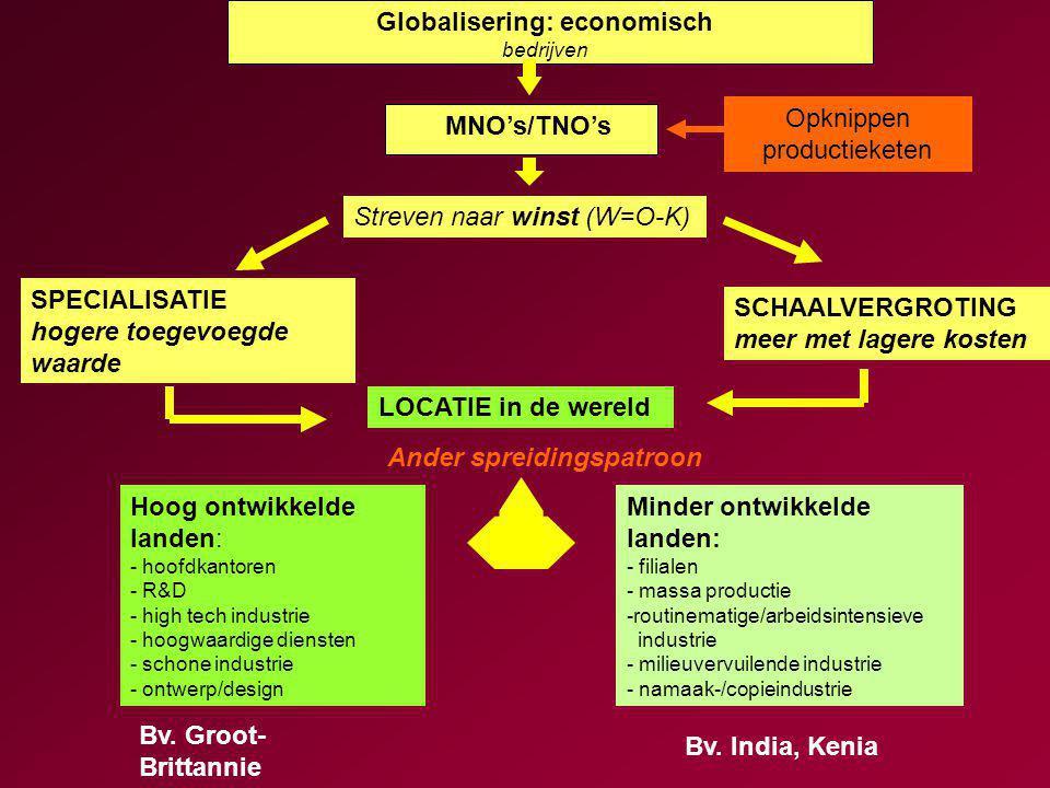 Globalisering: economisch bedrijven MNO's/TNO's Bv.