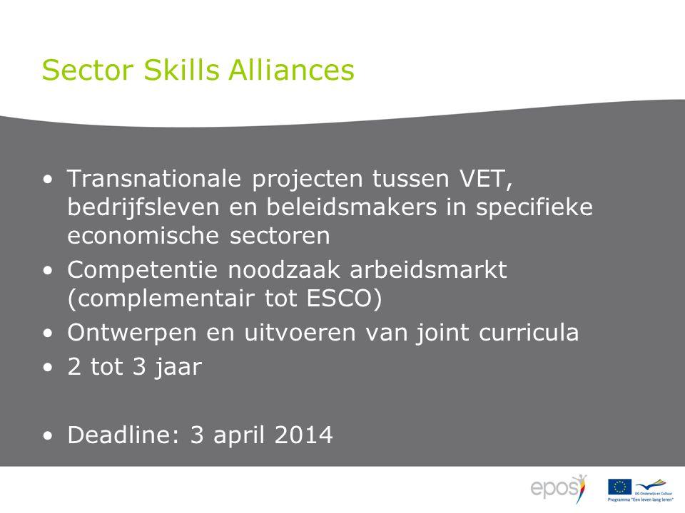 Sector Skills Alliances Transnationale projecten tussen VET, bedrijfsleven en beleidsmakers in specifieke economische sectoren Competentie noodzaak arbeidsmarkt (complementair tot ESCO) Ontwerpen en uitvoeren van joint curricula 2 tot 3 jaar Deadline: 3 april 2014