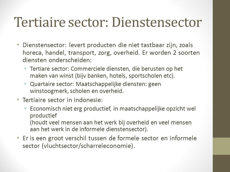 Tertiaire sector: Dienstensector Dienstensector: levert producten die niet tastbaar zijn, zoals horeca, handel, transport, zorg, overheid.