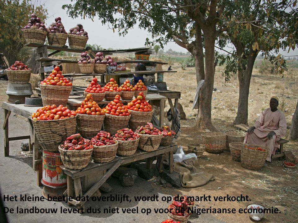 Het kleine beetje dat overblijft, wordt op de markt verkocht. De landbouw levert dus niet veel op voor de Nigeriaanse economie.