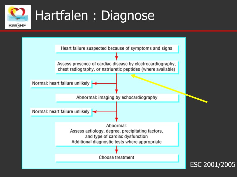 Hartfalen : Diagnose ESC 2001/2005