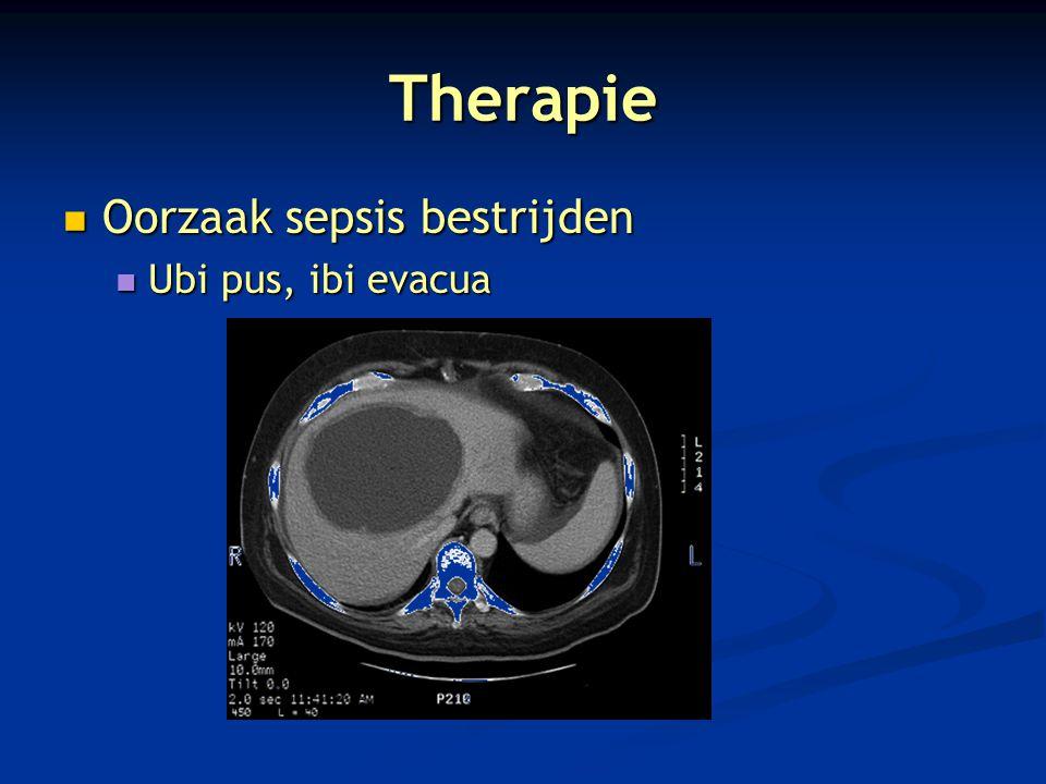 Therapie Oorzaak sepsis bestrijden Oorzaak sepsis bestrijden Ubi pus, ibi evacua Ubi pus, ibi evacua
