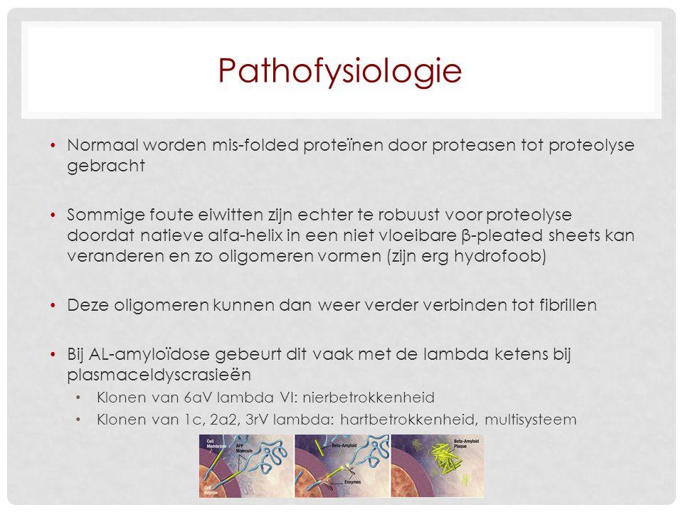 Literatuur http://www.amyloid.nl/ Hazenberg BPC, van Gameren II, Bijzet J, Jager PL, van Rijswijk MH.
