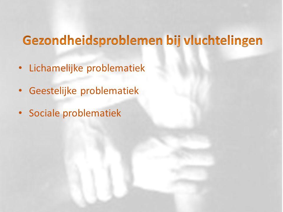 Heterogene groep Sociaal en economische factoren Somatisatie Normalisatie en informatie Stigma
