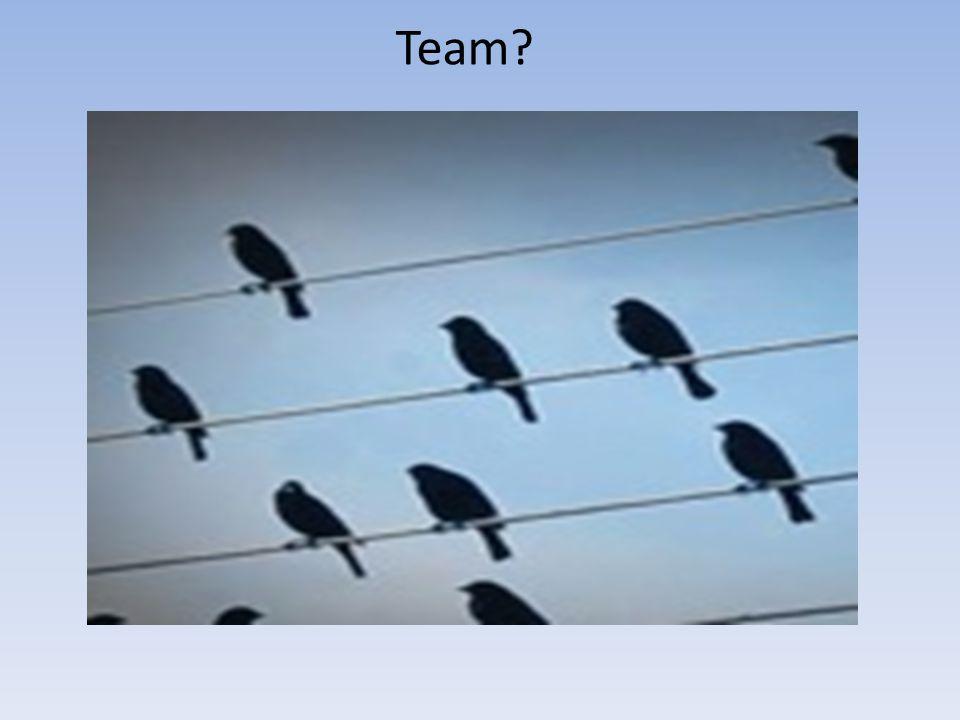 Team?