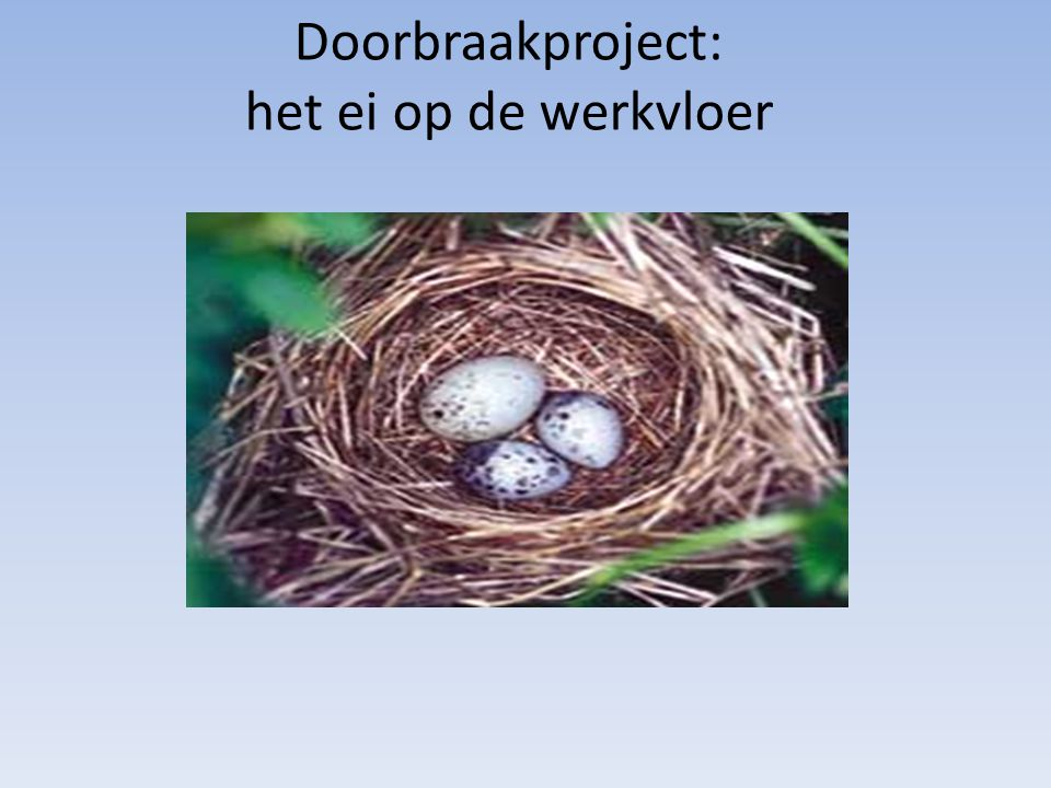 Doorbraakproject: het ei op de werkvloer
