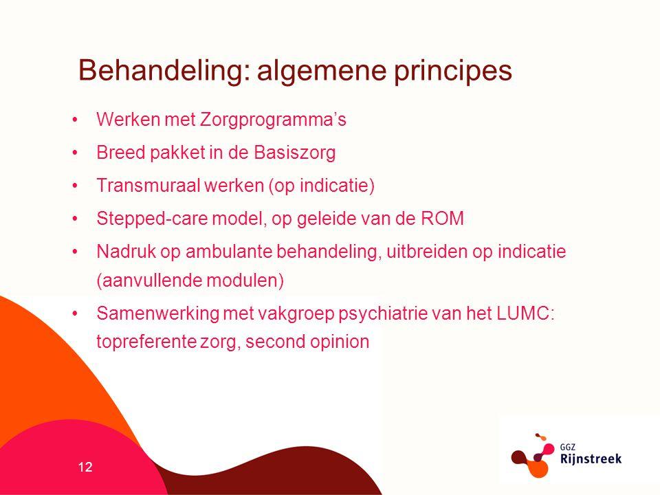 12 Behandeling: algemene principes Werken met Zorgprogramma's Breed pakket in de Basiszorg Transmuraal werken (op indicatie) Stepped-care model, op ge