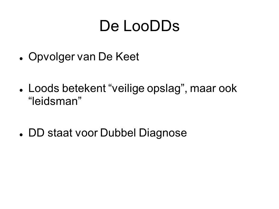 """De LooDDs Opvolger van De Keet Loods betekent """"veilige opslag"""", maar ook """"leidsman"""" DD staat voor Dubbel Diagnose"""