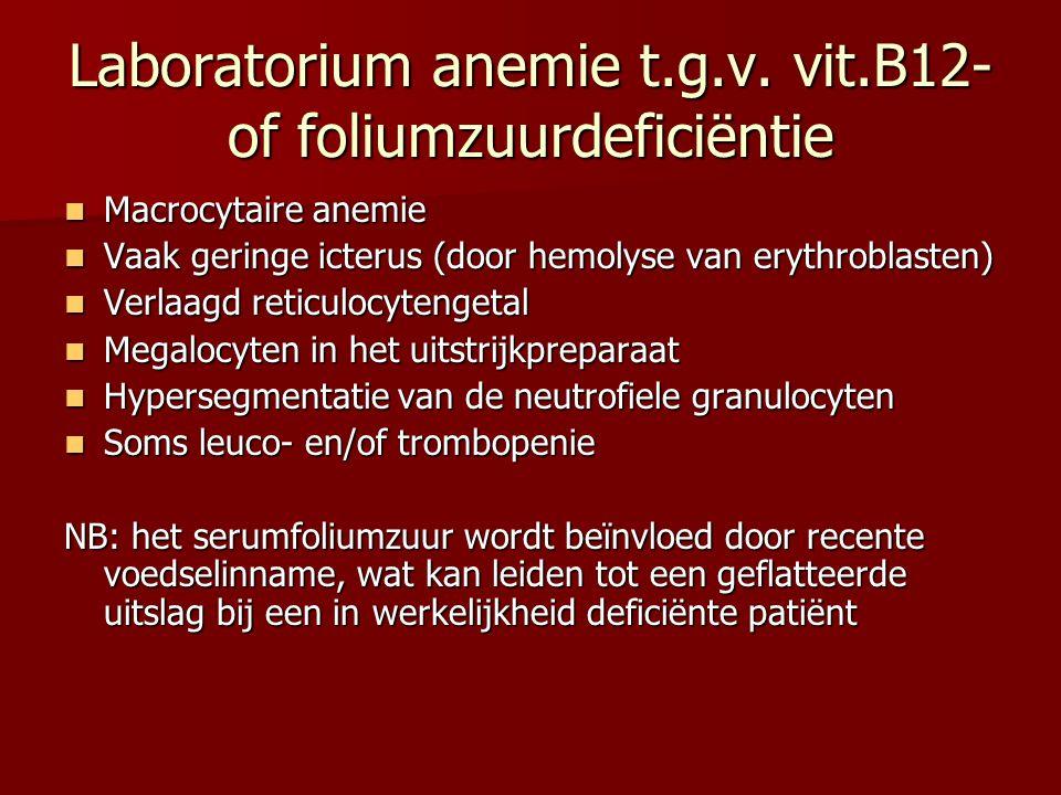 Laboratorium anemie t.g.v. vit.B12- of foliumzuurdeficiëntie Macrocytaire anemie Macrocytaire anemie Vaak geringe icterus (door hemolyse van erythrobl