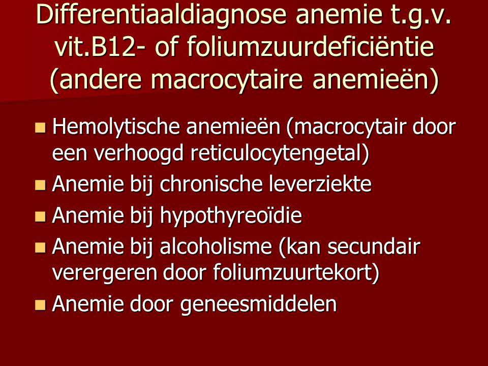 Differentiaaldiagnose anemie t.g.v. vit.B12- of foliumzuurdeficiëntie (andere macrocytaire anemieën) Hemolytische anemieën (macrocytair door een verho