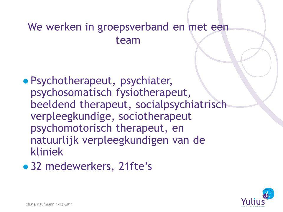 We werken in groepsverband en met een team ●Psychotherapeut, psychiater, psychosomatisch fysiotherapeut, beeldend therapeut, socialpsychiatrisch verpl