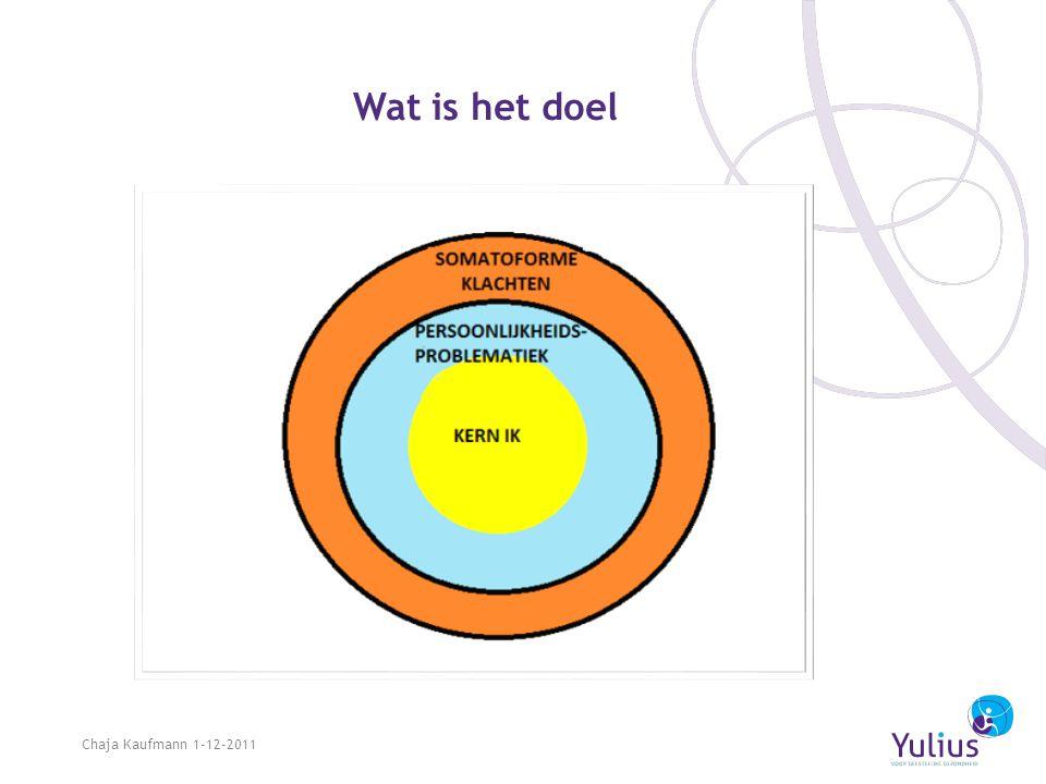 Wat is het doel Chaja Kaufmann 1-12-2011